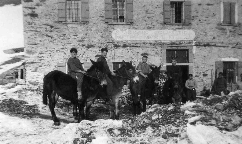 Partigiani in montagna (1943)
