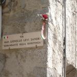 8-lionello-levi-sandri