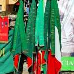 Le bandiere delle Divisioni FFVV